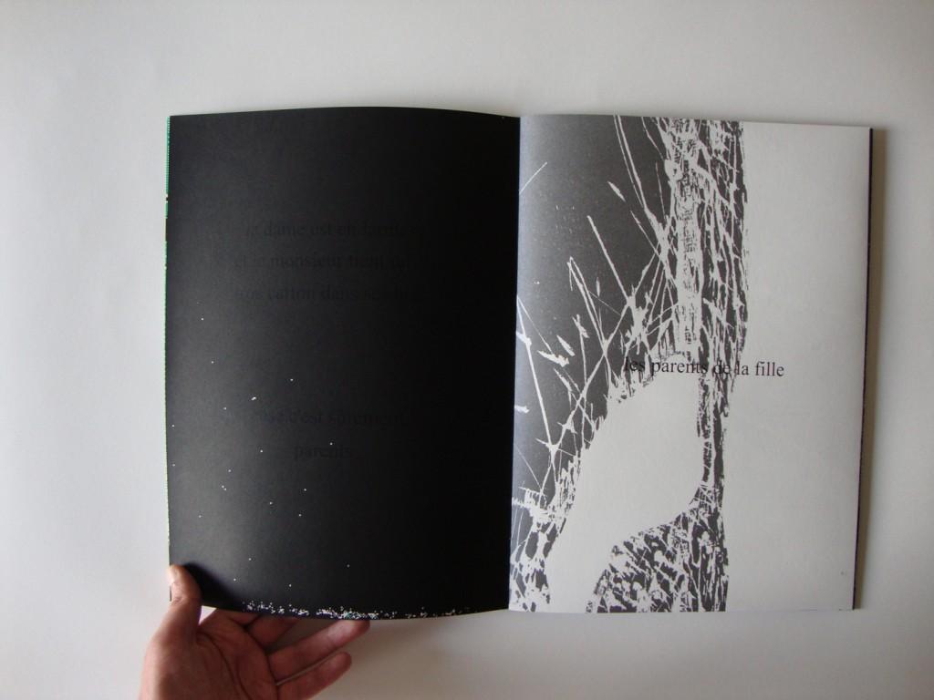 25x35 cm, sérigraphie et bois gravé sur papier.
